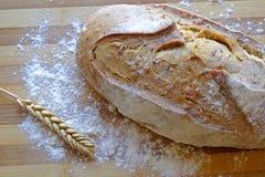 Świeży chleb z ziarno krajobrazu odgórną uprawą Zdjęcie Royalty Free