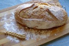 Świeży chleb z ziarno krajobrazu odgórny szerokim Zdjęcie Stock