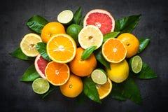 Świeży cytrus owoc asortyment na czerni Obrazy Royalty Free