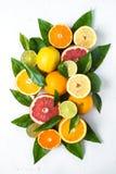 Świeży cytrus owoc asortyment na czerni Zdjęcia Stock