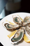 świeży cytryny ostryg talerz Zdjęcia Stock