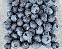 Świeży czarnej jagody owoc tło Obrazy Stock