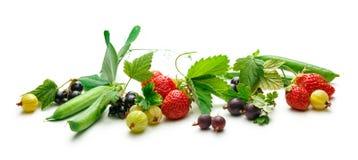 Świeży czarny rodzynek, agrest, truskawka i grochy, Obraz Stock