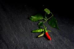 Świeży czerwony chili i zieleni chili na kamiennym tle Zdjęcia Stock