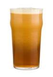 Świeży czerwony piwo Zdjęcia Stock