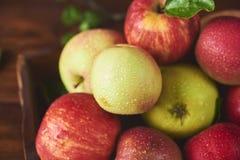Świeży dojrzały jabłko nad drewnianym tłem obrazy stock
