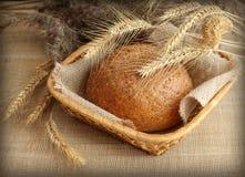 Świeży domowej roboty żyto chleb w koszu Zdjęcia Royalty Free