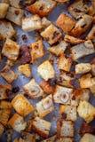 Świeży Domowej roboty chleba crouton obrazy stock