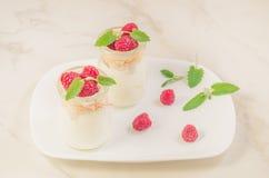 Świeży domowej roboty jogurt dekorujący z świeżą malinką, mennicą i mennicą/Dwa szklanego słoju z świeżym domowej roboty jogurtem obraz stock