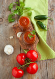 Świeży Domowej roboty salsa upad Zdjęcia Stock