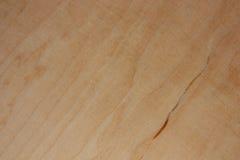 świeży drewno Obraz Stock
