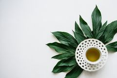 Świeży fragrant, zdrowy ziołowy i handluje porcelany świeżego porcelanowe truskawek herbatę razem Obrazy Stock