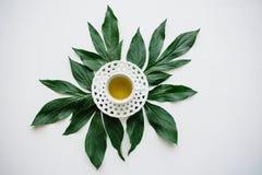 Świeży fragrant, zdrowy ziołowy i handluje porcelany świeżego porcelanowe truskawek herbatę razem Zdjęcia Royalty Free