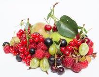 Świeży fruity lato set Zdjęcia Royalty Free