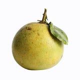 Świeży grapefruitowy Obrazy Stock
