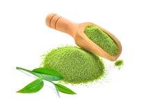 Świeży herbaciany liścia i zielonej herbaty proszek w drewnianej miarce odizolowywającej dalej zdjęcie stock