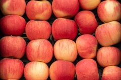 Świeży i życiorys czerwony jabłko zamknięty w górę rynku przy obraz royalty free