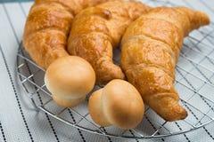Świeży i smakowity croissant nad tłem Zdjęcia Royalty Free