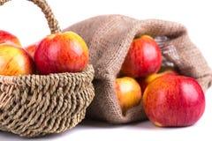 Świeży jabłko Obraz Royalty Free