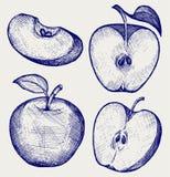 Świeży jabłko z liściem i plasterkiem Obrazy Stock