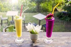 Świeży jackfruit sok i smoka owocowy sok z ogrodowym tłem Fotografia Stock