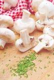Świeży jadalny Portabello pieczarki szampinion i pietruszka fotografia royalty free