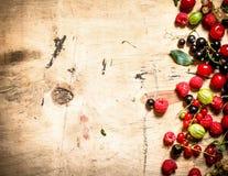 świeży jagoda las Na drewnianym tle Zdjęcia Stock
