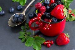 świeży jagoda set fotografia stock