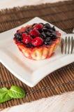 Świeży jagodowy tartlet lub tort wypełnialiśmy z custard, malinką, czarnej jagody redcurrant i jeżynowym wyśmienicie deserem, łat Zdjęcie Stock
