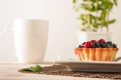 Świeży jagodowy tartlet lub tort wypełnialiśmy z custard, malinką, czarnej jagody redcurrant i jeżynowym wyśmienicie deserem, łat Obraz Royalty Free