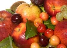świeży jagody fruitd obraz royalty free
