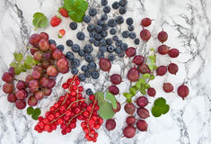 świeży jagody lato Fotografia Royalty Free
