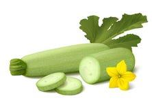 Świeży jasnozielony jarzynowego szpika kostnego zucchini na białym tle Fotografia Stock