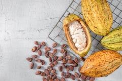 Świeży kakao z kakao strąkami i kakaowymi fasolami zdjęcie stock
