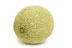świeży kantalupa melon obraz royalty free