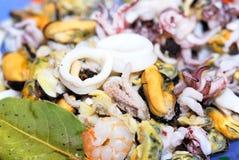świeży koktajlu owoce morza Fotografia Royalty Free
