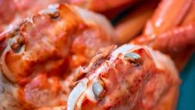 Świeży kraba ` s Przygląda się Wyśmienicie Karmowe fotografie zdjęcie royalty free