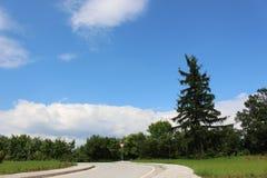 Świeży krajobraz z szyldową uwagą Zdjęcia Stock