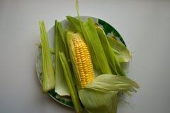 Świeży kukurydzany kolor żółty Zdjęcie Stock