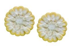 Świeży Kukurydzany przekrój poprzeczny Obraz Royalty Free