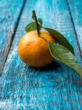 Świeży mandaryn lub tangerine z trzonami i liśćmi na błękitnej drewnianej tło kopii przestrzeni zdjęcie royalty free
