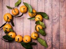 Świeży mandaryn lub tangerine z trzonami i liśćmi w postaci okręgu na brown drewnianej tło kopii przestrzeni Zdjęcia Royalty Free