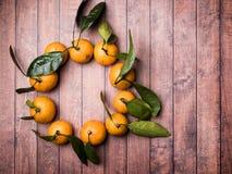 Świeży mandaryn lub tangerine z trzonami i liśćmi w postaci okręgu na brown drewnianej tło kopii przestrzeni Zdjęcie Stock