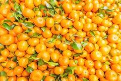 Świeży mandarynki pomarańcze tło Zdjęcia Royalty Free