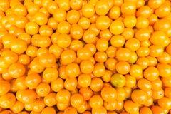 Świeży mandarynki pomarańcze tło Obrazy Royalty Free