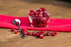 Świeży marznący cranberry Fotografia Stock