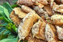 Świeży miód w grępli Zdjęcie Royalty Free