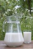 świeży mleko Zdjęcia Royalty Free