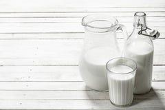 Świeży mleko w miotaczu Obraz Stock