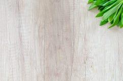 Świeży niedźwiadkowy czosnek na drewnie Obraz Stock